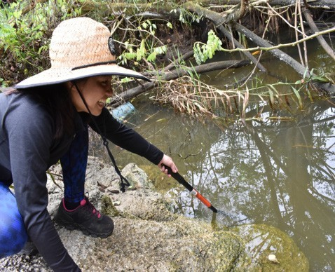 Sampling of water in the Agana Spring area and soils near a wastewater pump station were collected by WERI to source potential sites of perfluorooctanesulfonic acid (PFOS).
